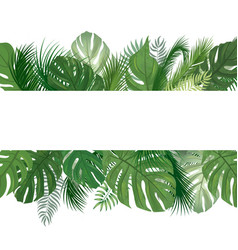 floral pattern tropical palm tree leaves vector image