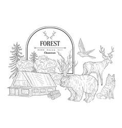Forest themed vintage sketch vector