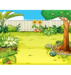 Garden with flowers vector image