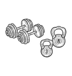 sport barbell weights dumbbell sketch vector image