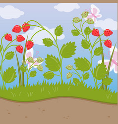Strawberry field green background with ripe vector