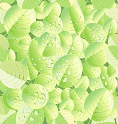 texture of green leaf vector image vector image
