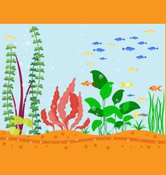 Transparent aquarium sea aquatic background vector