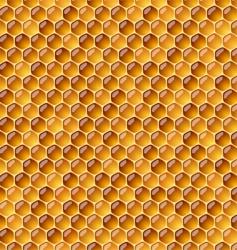 honeycomb vector image vector image