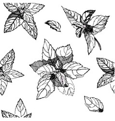 black and white seamless pattern with basil leaves vector image