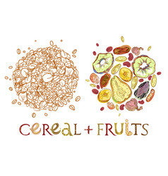 Cereal with dehydrated fruits round shape pattern vector