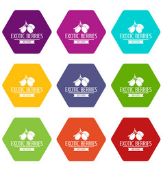 exotic berries icons set 9 vector image