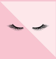 Eyelashes icon isolated pink background vector