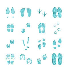 Ice blue footprints set on white vector
