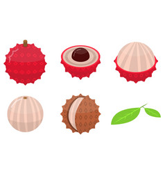lychees icons set isometric style vector image