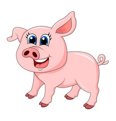 pig cartoon character design isolated on white vector image