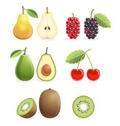 Set of colorful fruit icons pear mulberry vector