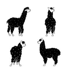 set of llama plant flower vector image