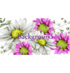 spring daisy flowers background watercolor vector image