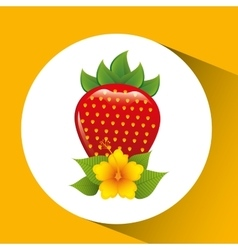 delicious strawberry and yellow flower vector image
