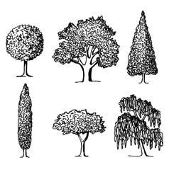 Set of trees in silhouettes vector image vector image