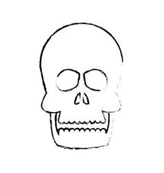 human skull anatomy health front sketch vector image