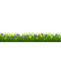 flowers frame with grass vector image