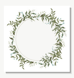 hand drawn green eucalyptus fern chamomile vector image