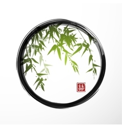 Green bamboo in black enso zen circle vector image