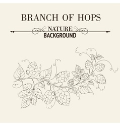 Hops with leafs isolated on sepia vector image
