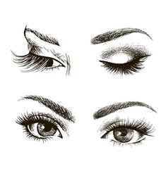 female eye set vector image