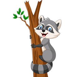cartoon raccoon climbing on tree vector image