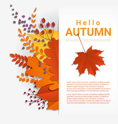 Colorful autumn leaves and fruits background vector