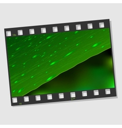 Film frame with Leaf and drops vector image