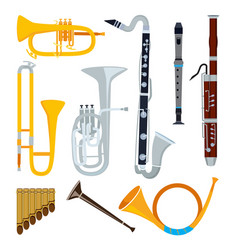 isolated musical instruments in cartoon style vector image