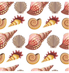 seashell and conch sealife animals mollusks vector image