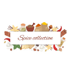 spices collection with lettering banner and vector image