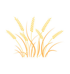Wheat field background cereals icon set vector