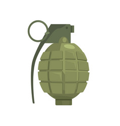 pineapple hand grenade military weapon vector image