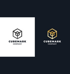 cube logotype template positive and negative vector image