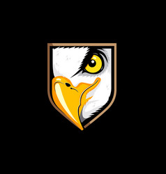 eagle eye insignia vector image