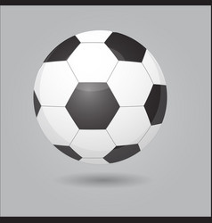 football with football ball vector image