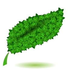 Green Leaves Isolated Symbl of Nature vector image