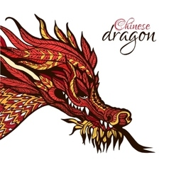 Hand Drawn Dragon vector