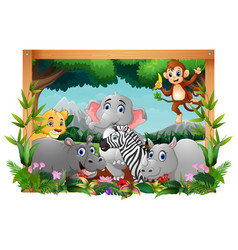 happy animals in square frame vector image