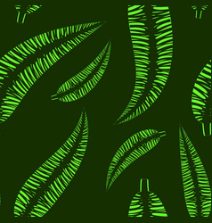 pattern of green leaves of a palm tree on a green vector image
