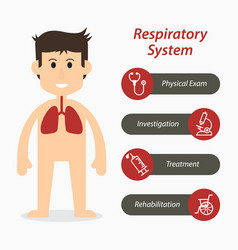 Respiratory system and medical line icon vector