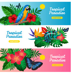Tropical horizontal banner set vector