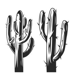 Vintage cactus plants concept vector