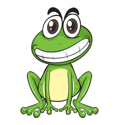 a frog vector image