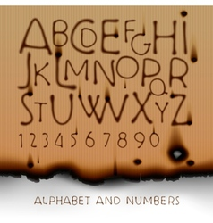 Vintage alphabet and numbers on burned out paper vector image vector image