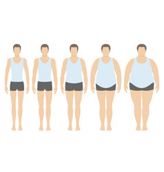 body mass index vector image
