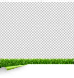 Green grass border with white paper and corner vector