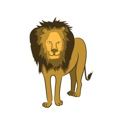 One lion on a white background vector
