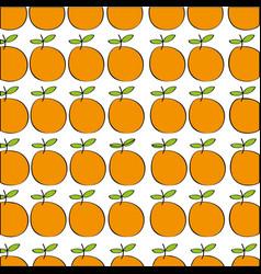 Oranges pattern fresh fruit drawing icon vector